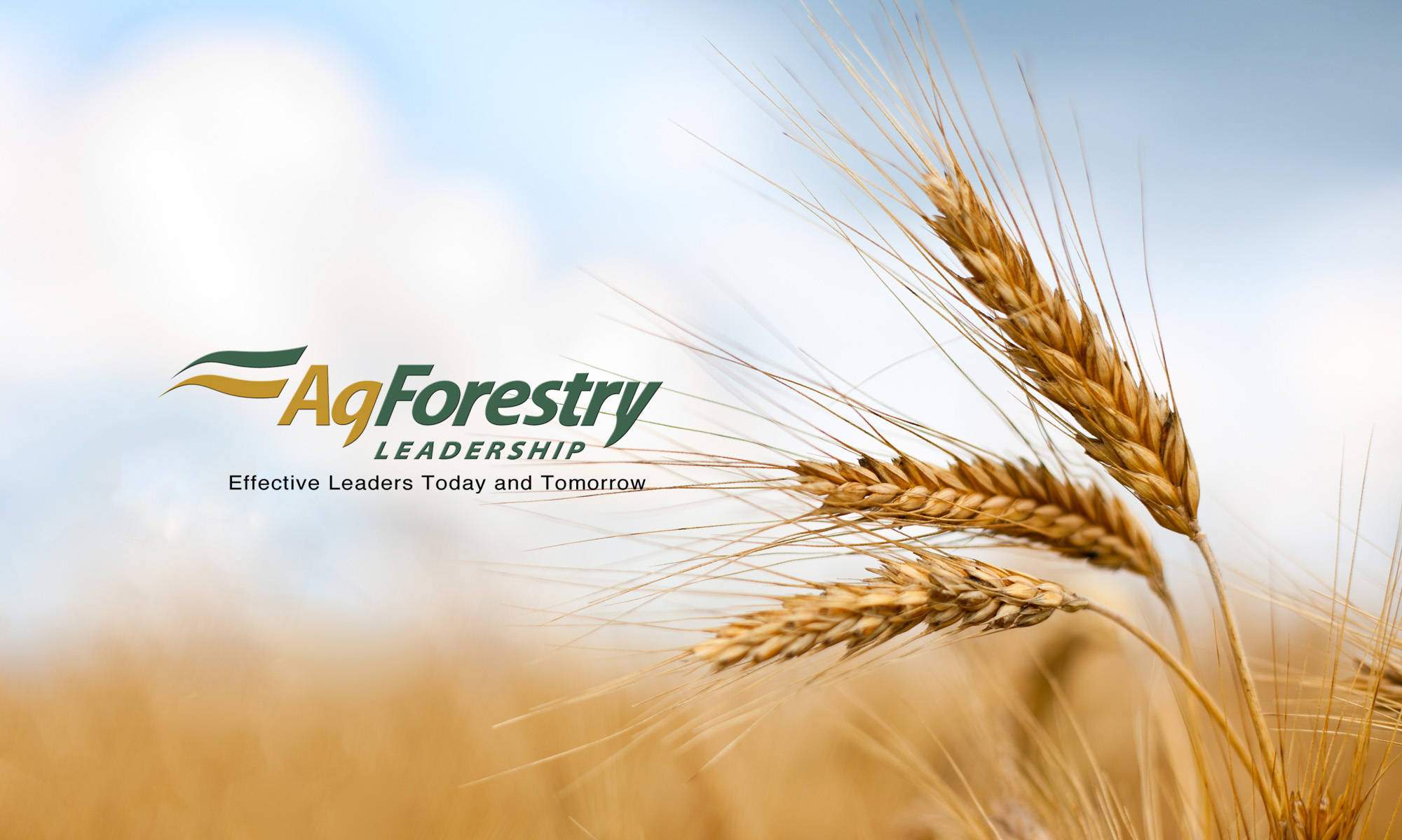 AgForestry